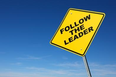 segui il leader